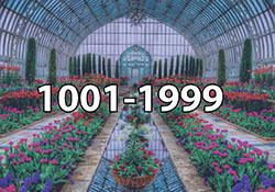 1001 - 1999 Pieces