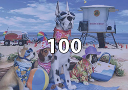100 Pieces