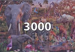 3000 Pieces
