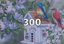 300 Pieces