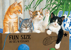 Cat Jigsaw Puzzles