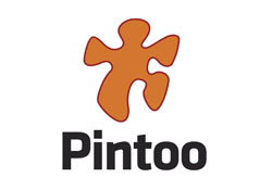 Pintoo Puzzles