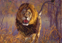 Lion Jigsaw Puzzles