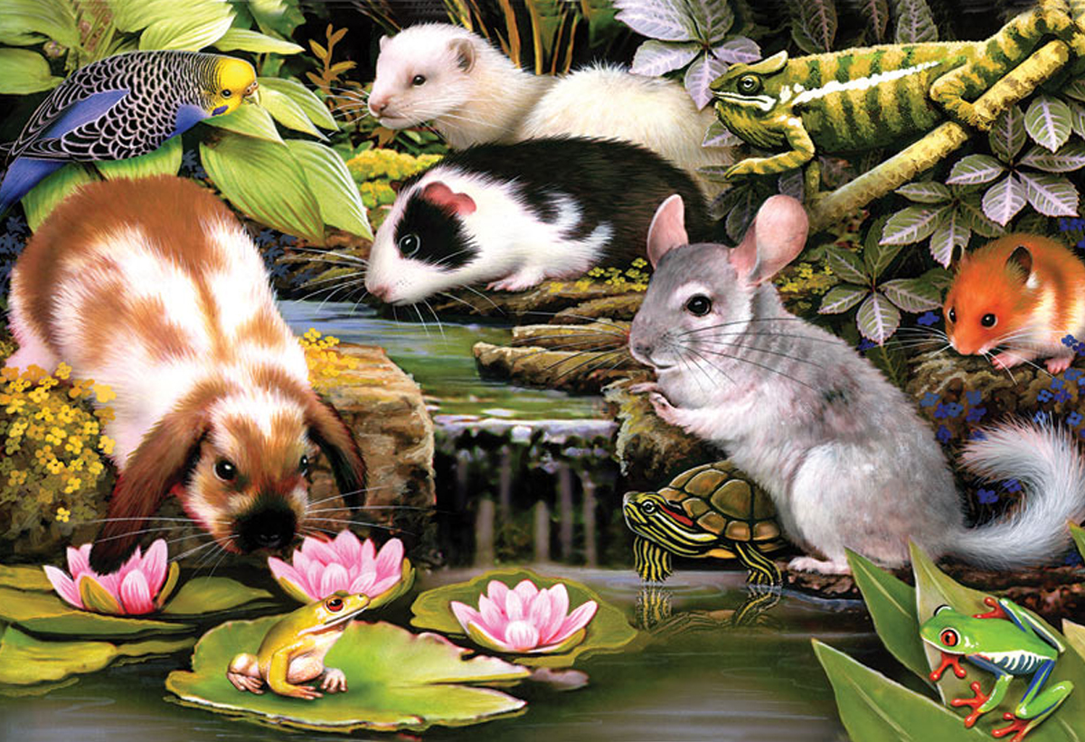 Other Animal Puzzles