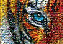 Photomosaic Puzzles