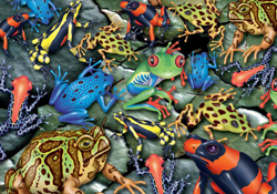 Reptiles and Amphibian Jigsaw Puzzles