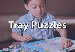 Tray Puzzles