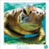 Turtle Swimmer Under The Sea Jigsaw Puzzle