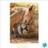 A Mother's Love Cats Jigsaw Puzzle