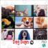 Pet's Virtual Hangout Cats Jigsaw Puzzle