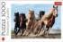 Galloping Horses Horses Jigsaw Puzzle