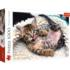 Cheerful Kitten Cats Jigsaw Puzzle