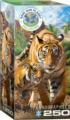 Tigers Tigers Jigsaw Puzzle