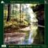Quiet Forest Forest Jigsaw Puzzle