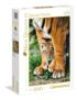 Bengal Tiger Cub Between its Mother's Legs Mother's Day Jigsaw Puzzle