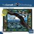 Laysan Albatross Birds Jigsaw Puzzle