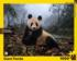 Giant Panda Animals Jigsaw Puzzle