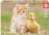 Adorable Friends Cats Jigsaw Puzzle