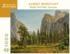 Bridal Veil Falls, Yosemite Contemporary & Modern Art Jigsaw Puzzle