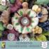 Discovery Park (Mushrooms) Food and Drink Jigsaw Puzzle