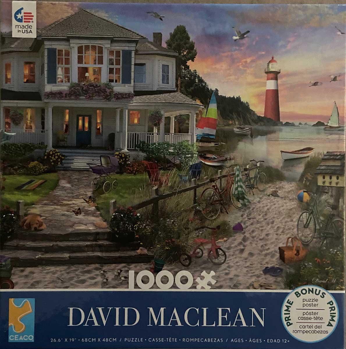 1000 Piece David Maclean Assortment Series 4, #3 Beach Jigsaw Puzzle