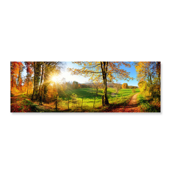 Meadow Sunrise - Scratch and Dent Countryside Jigsaw Puzzle
