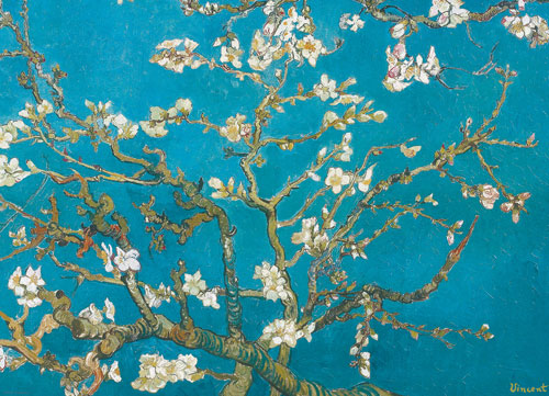 Almond Blossom Flowers Jigsaw Puzzle
