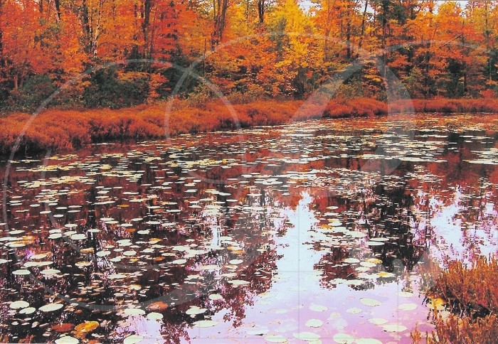 Autumn Lake View Landscape Wooden Jigsaw Puzzle