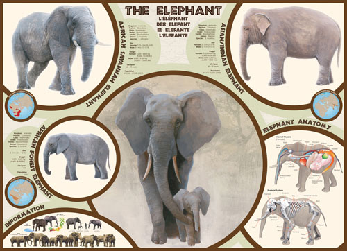 The Elephant Other Animals Jigsaw Puzzle