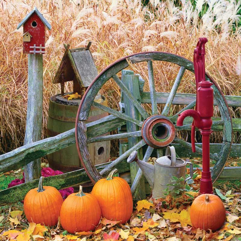 Pumpkin Harvest Fall Jigsaw Puzzle