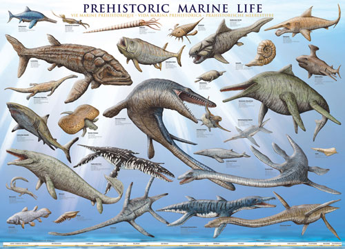 Prehistoric Marine Life Under The Sea Jigsaw Puzzle