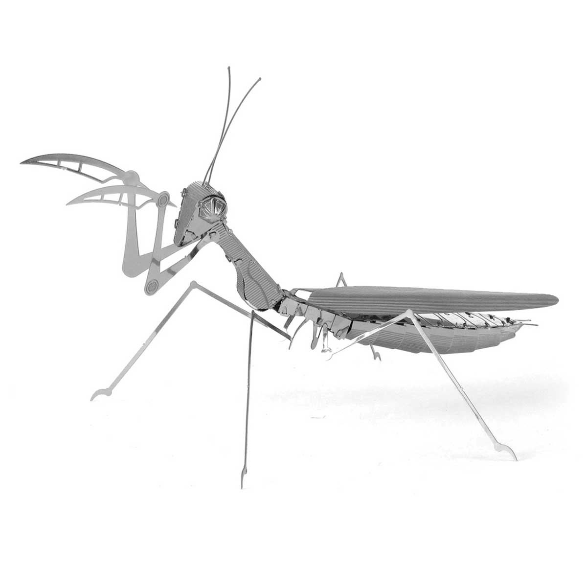 Praying Mantis Butterflies and Insects 3D Puzzle