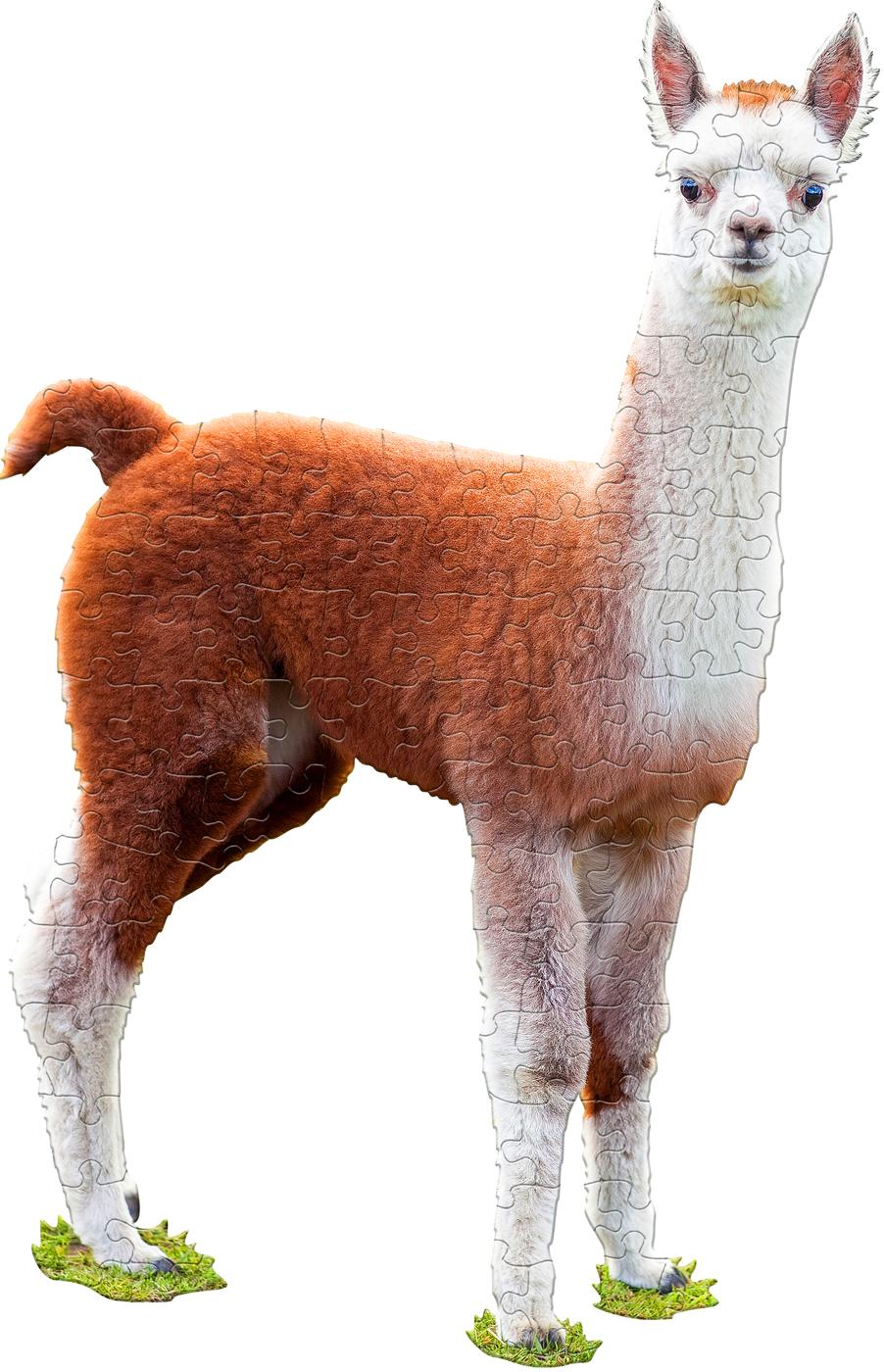 I Am Lil' Llama Animals Shaped Puzzle