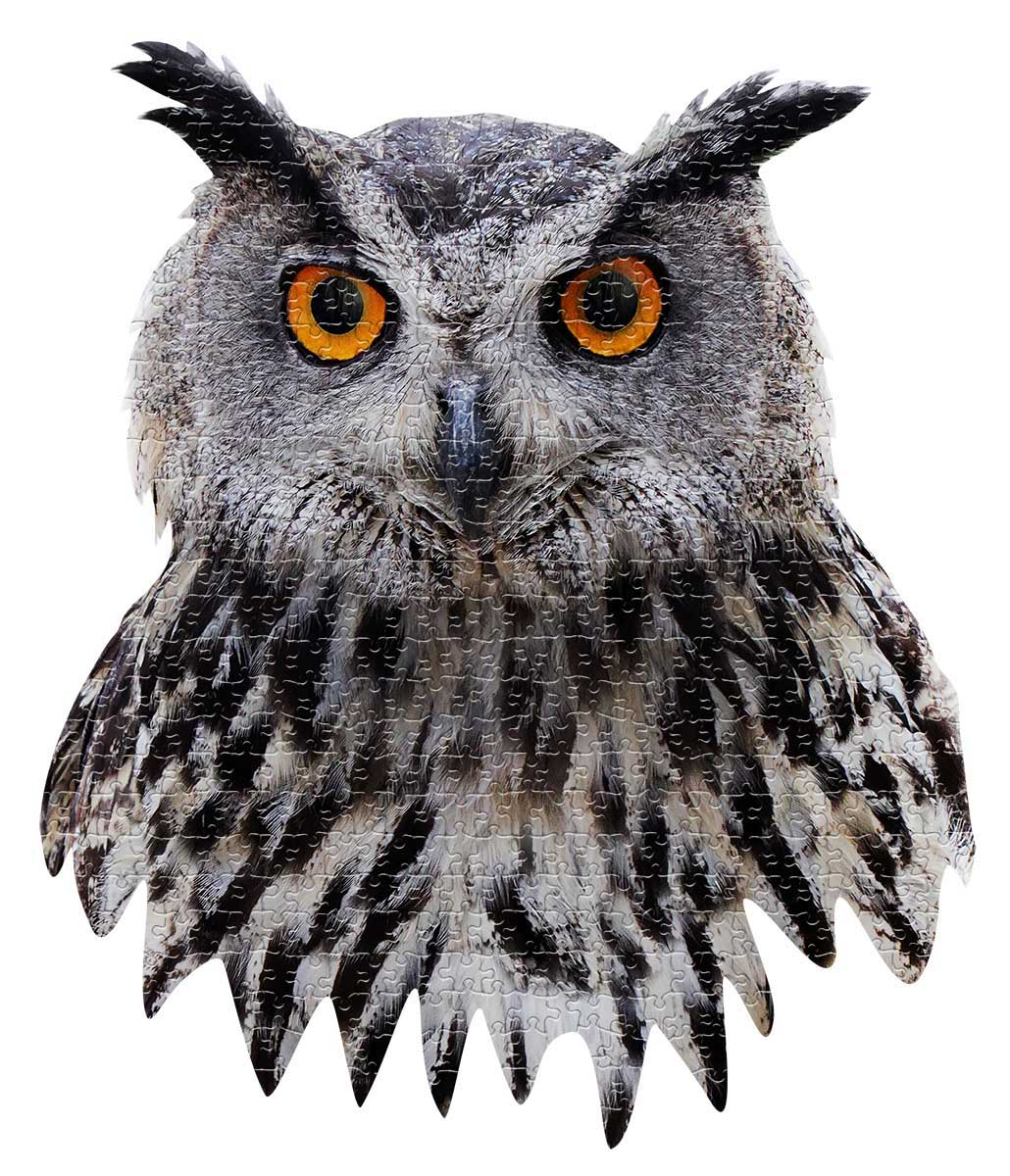 I AM Owl Owl Shaped Puzzle