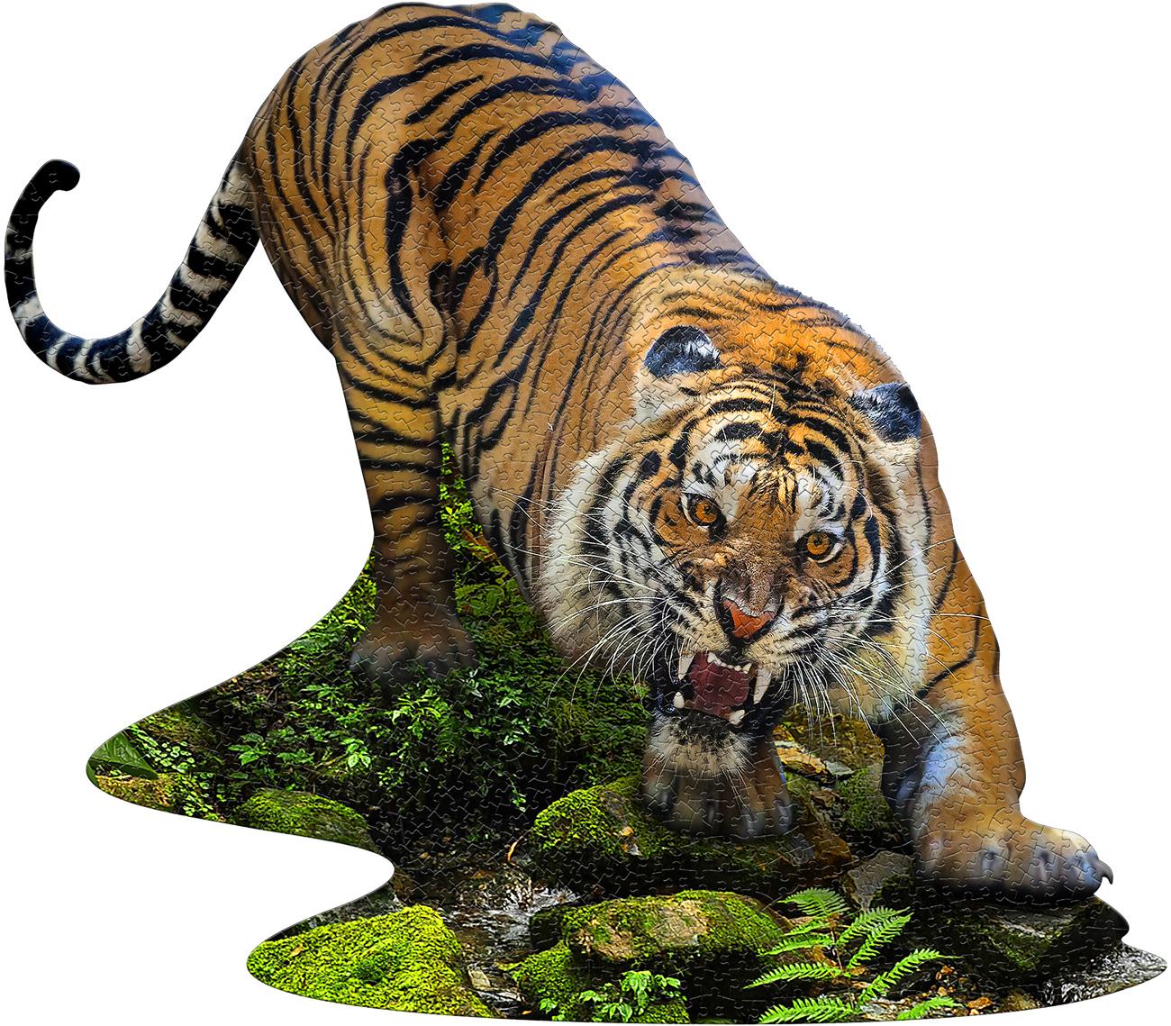 I Am Tiger Tigers Shaped Puzzle