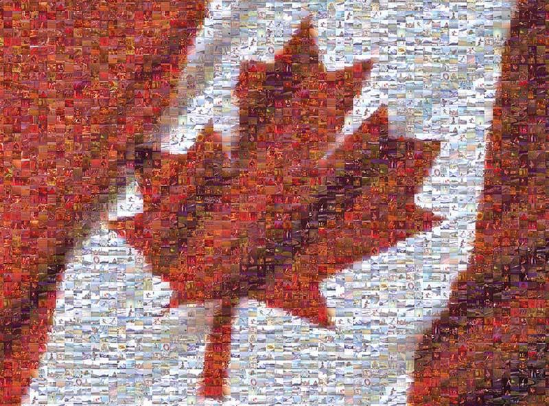 Canadian Flag Canada Jigsaw Puzzle