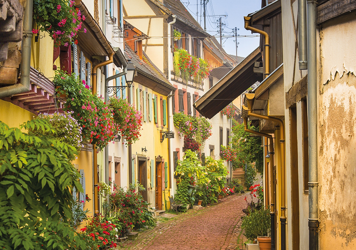 A Walk In Alsace Landscape Jigsaw Puzzle