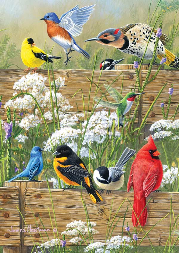 Songbird Menagerie Birds Jigsaw Puzzle