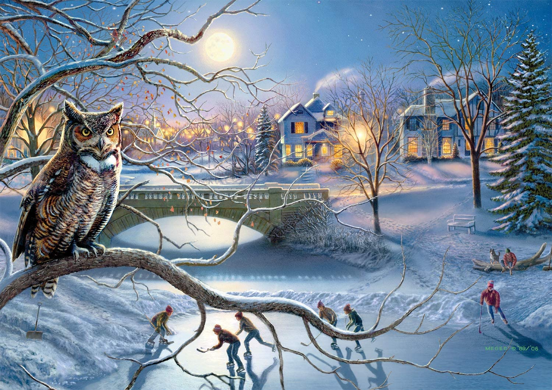 Nighttime Hockey Match Winter Jigsaw Puzzle