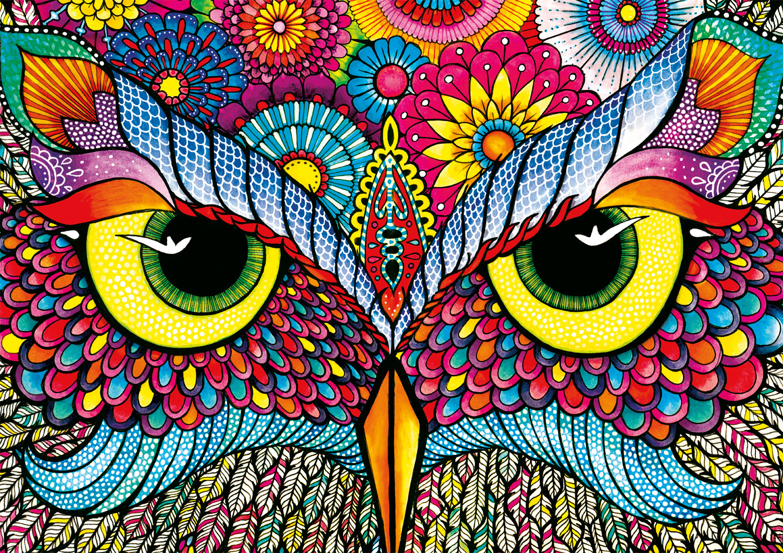 Owl Eyes Owl Jigsaw Puzzle