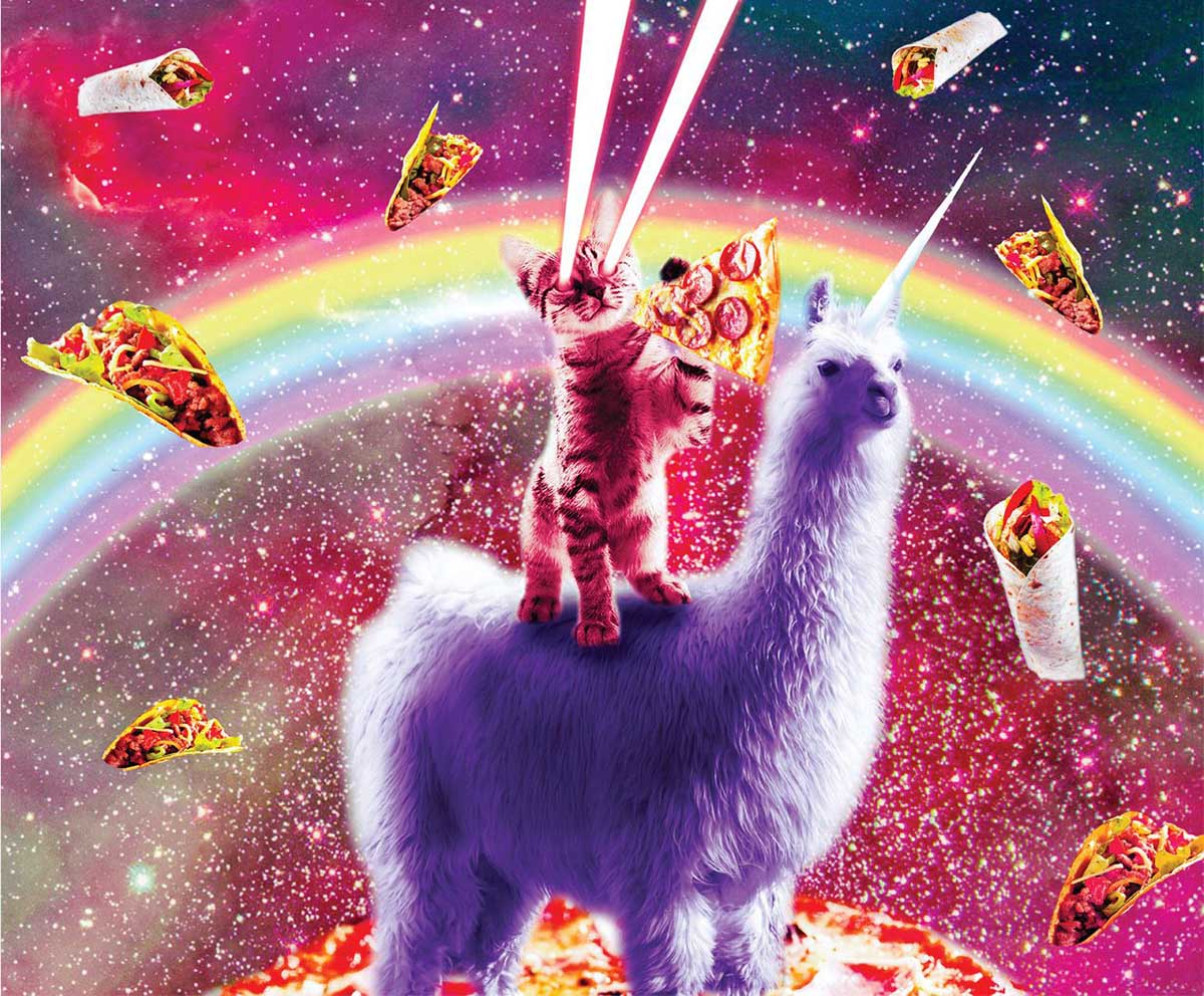 Laser Llama Kitty Cats Jigsaw Puzzle