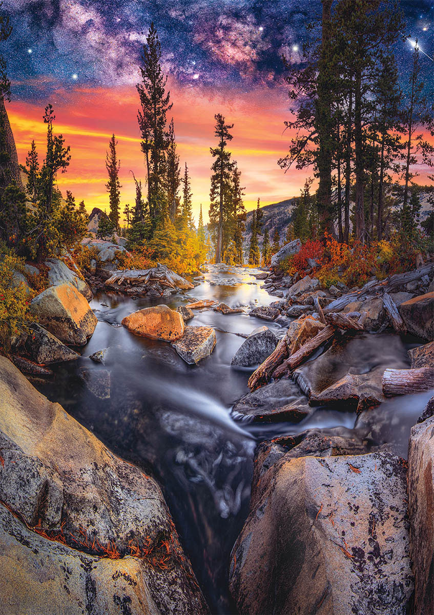 Earthpix - Forest Magic Hour Forest Jigsaw Puzzle