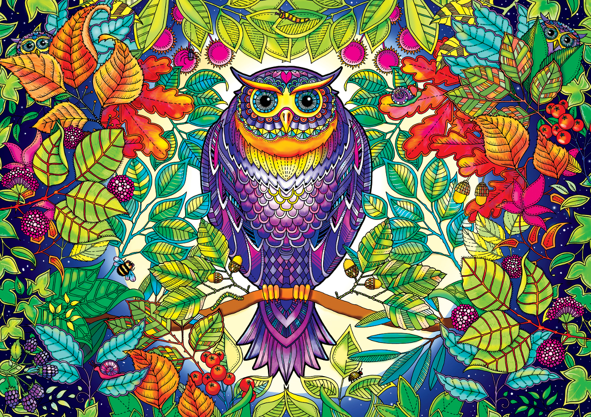 Forest Owl Adult Coloring Pages Included Jigsaw Puzzle
