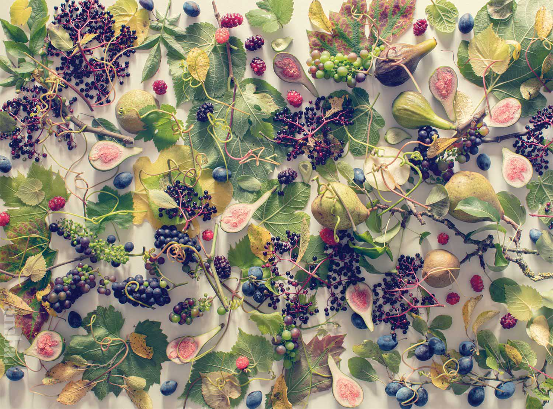 Autumn Fruit Fall Jigsaw Puzzle