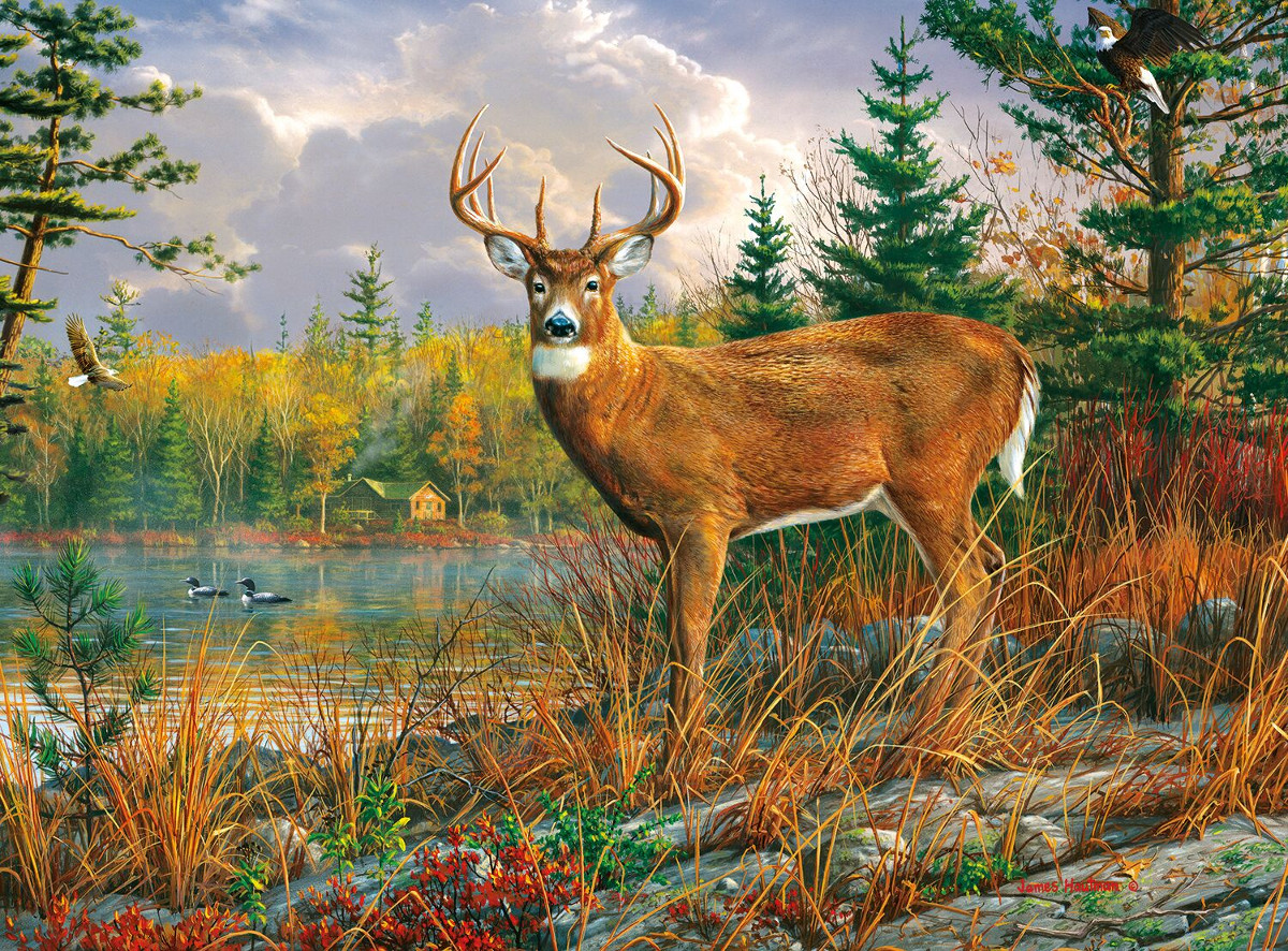 Tranquil Moment Jigsaw Puzzle Puzzlewarehouse Com