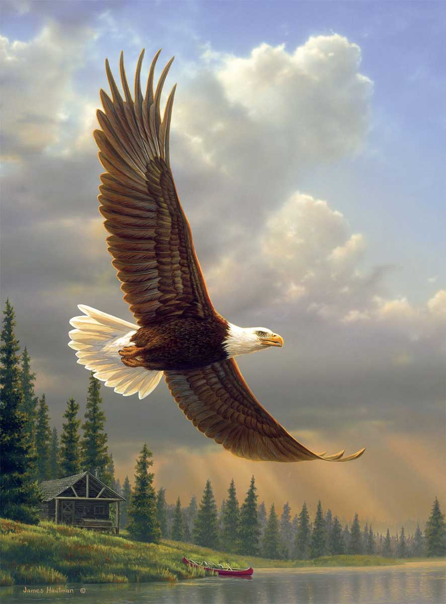 Into the Light Eagles Jigsaw Puzzle