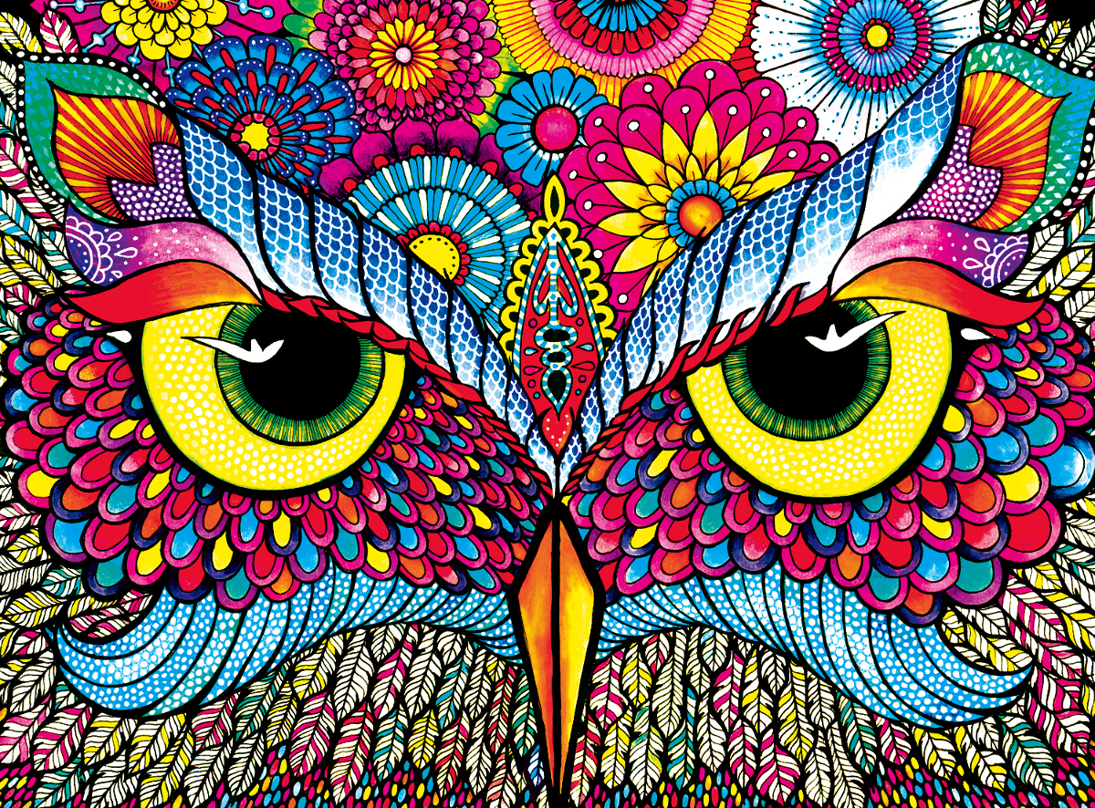 Owl Eyes Birds Jigsaw Puzzle