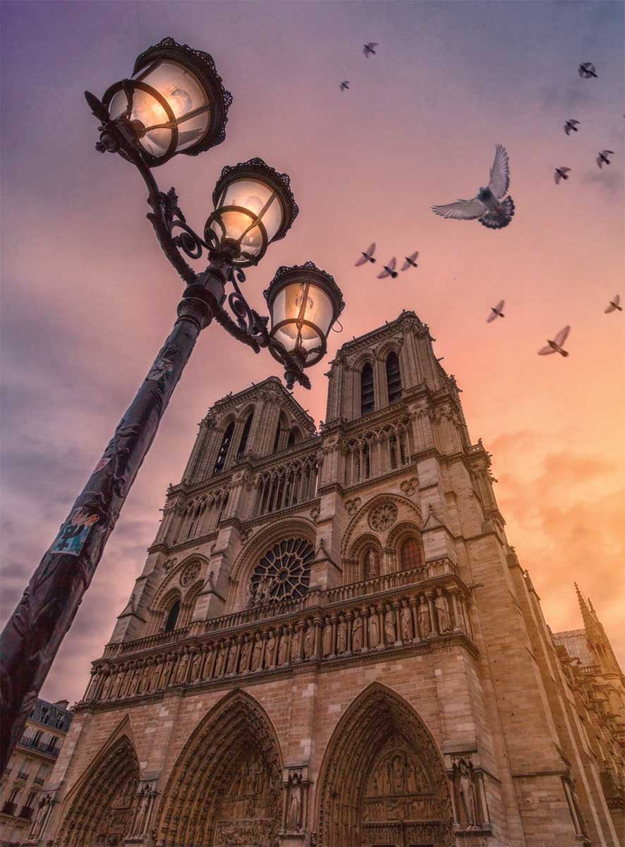 Wonders of Notre Dame France Jigsaw Puzzle