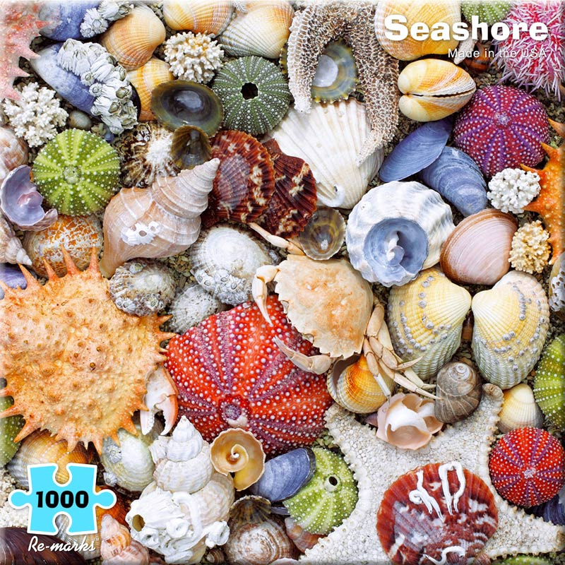 Seashore Under The Sea Jigsaw Puzzle