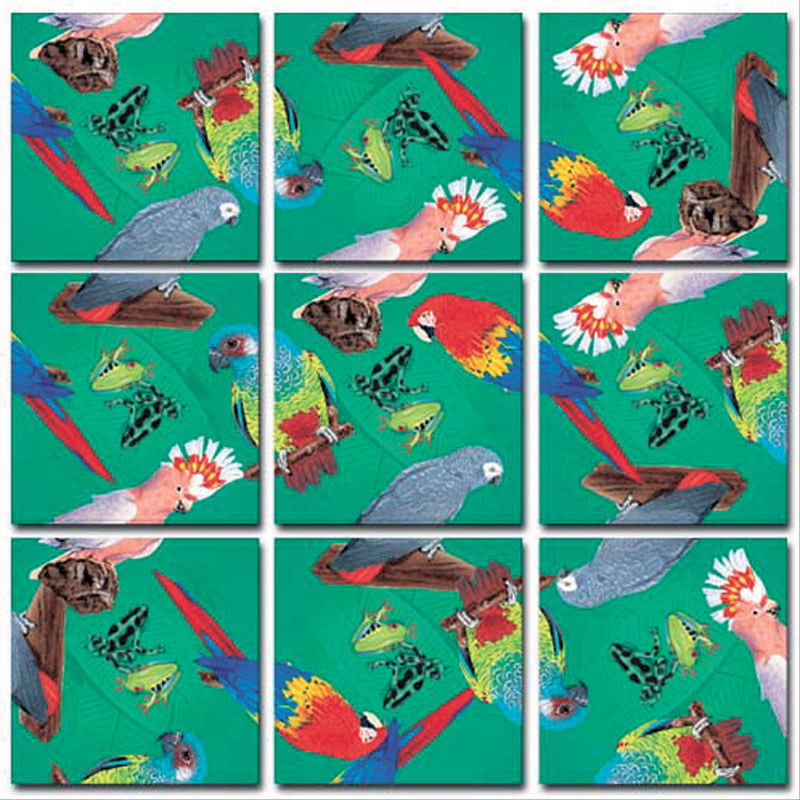Parrots Birds Children's Puzzles